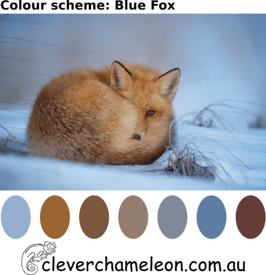 Colour Inspiration Tuesday blue fox palette. light steel blue, cadet blue, grey, dark olive, brown, slate