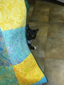 Mew and quilt