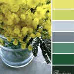 Wattle You Make? color scheme from Clever Chameleon