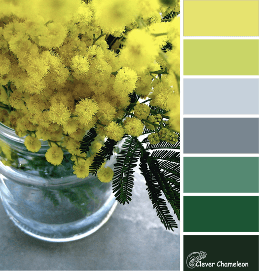 Wattle You Make colour scheme from Clever Chameleon