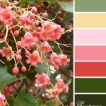 Christmas Bells color scheme from Clever Chameleon