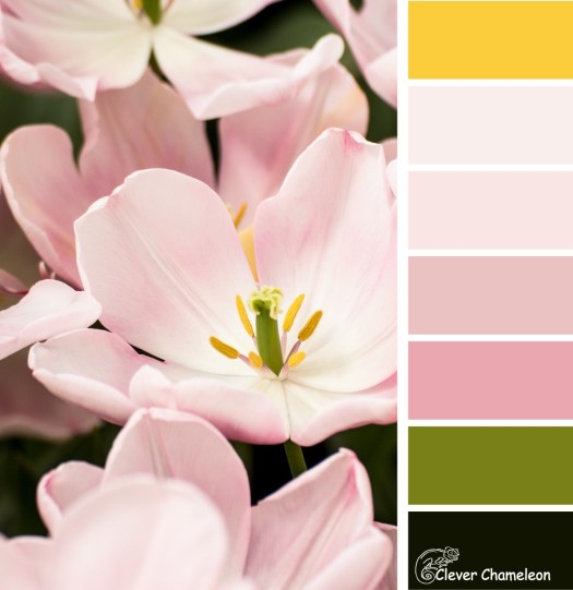 Tiptoe through the Tulips color scheme from Clever Chameleon