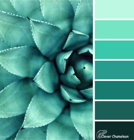 Succulent Blue-Green color scheme by Clever Chameleon