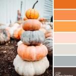Pumpkin Stack color scheme from Clever Chameleon