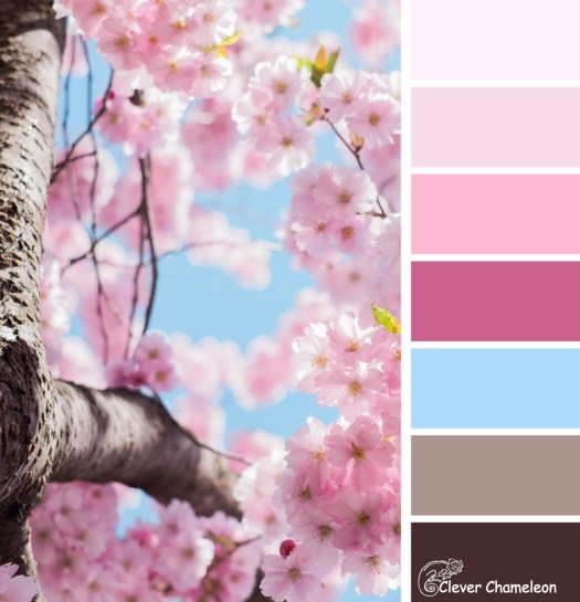 Branches and Blossoms colour board at Clever Chameleon