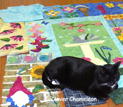 cat on patchwork