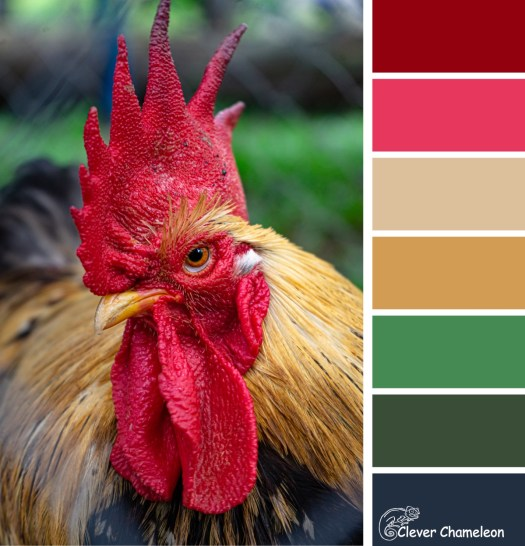 Rising Rooster colour board at Clever Chameleon