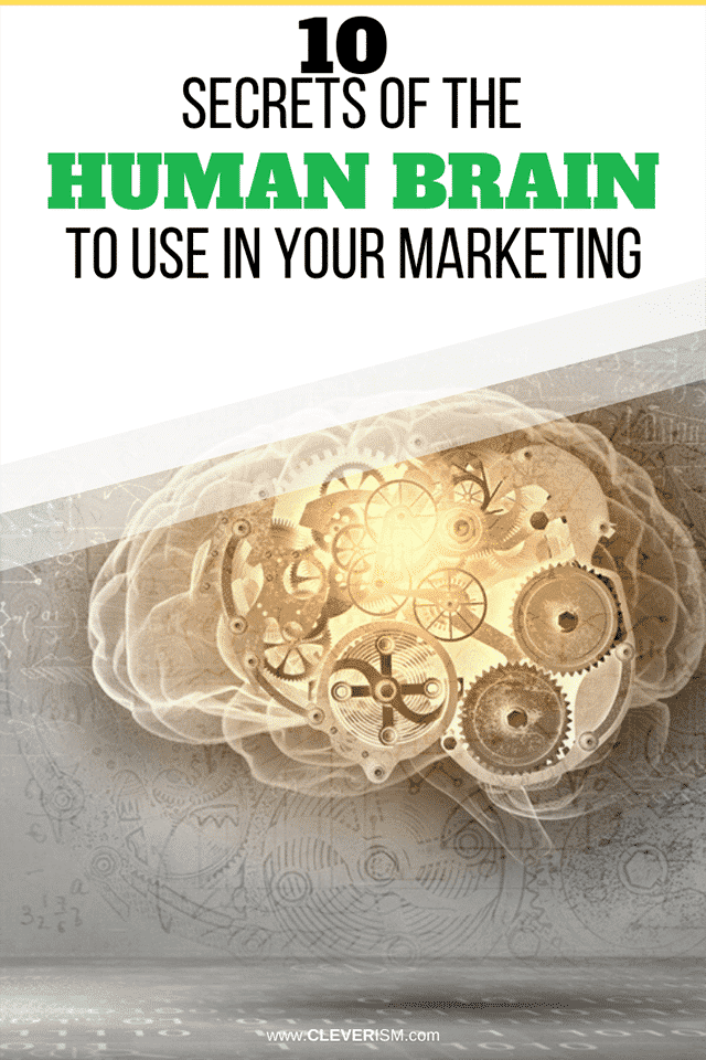 10 Secrets of the Human Brain to Use in Your Marketing