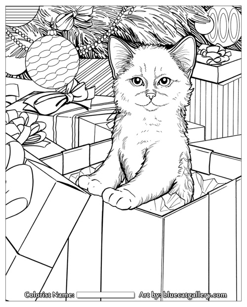 Santa's Cats: Adult Coloring Book