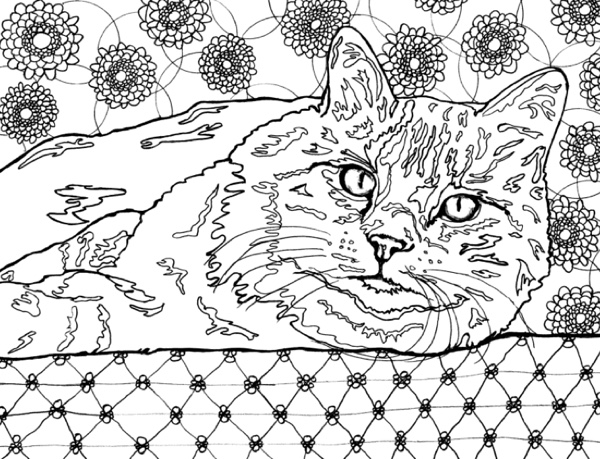 Best Coloring Books for Cat Lovers Cleverpedia