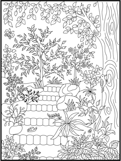 Hidden Garden: An Adult Coloring Book