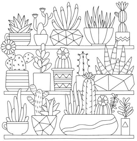 Best Succulent & Cactus Coloring Books & Pages - Cleverpedia