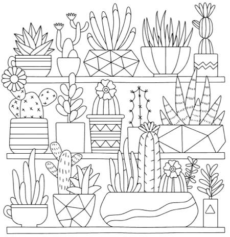 Mindful Succulents Coloring Book A Tiny Terrarium