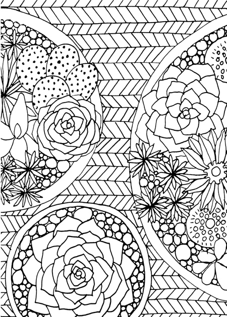 succulents portable adult coloring book - Coloring Book Page