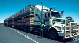 AUSTRALIA INSTANT ROAD-TRIP BY ®-18