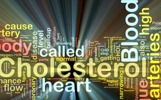 Αποτέλεσμα εικόνας για χαμηλώσουμε τη χοληστερίνη
