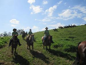 amigos da cavalgada