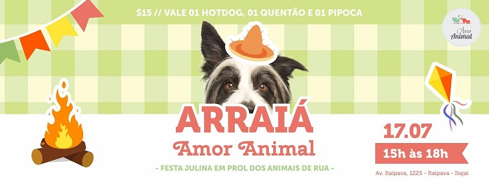 festa julina amor animal