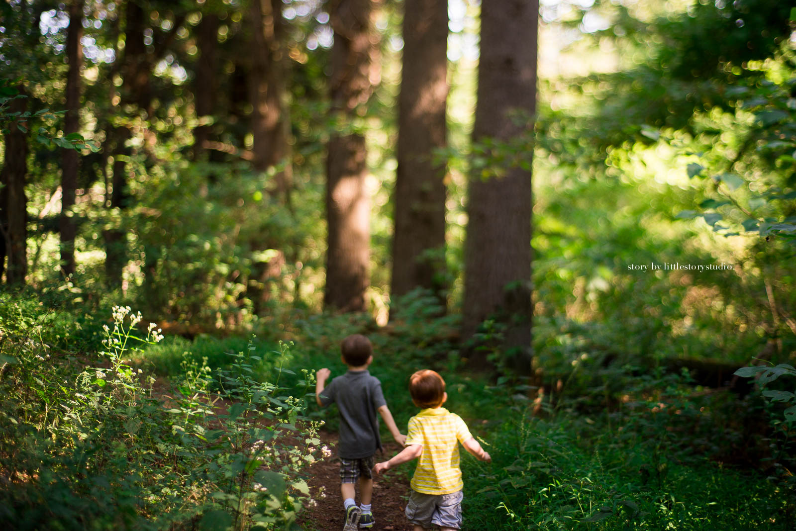 Image result for boys walking along a trail images