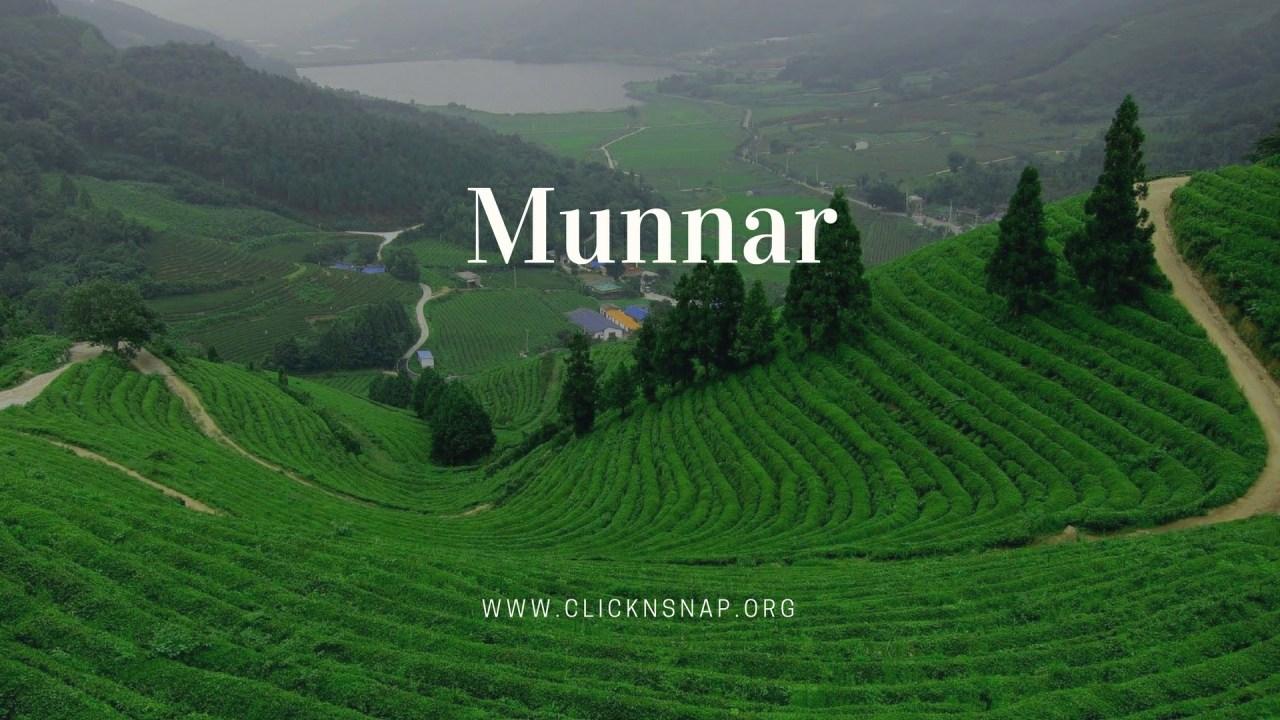 Munnar, Summer Holiday, India