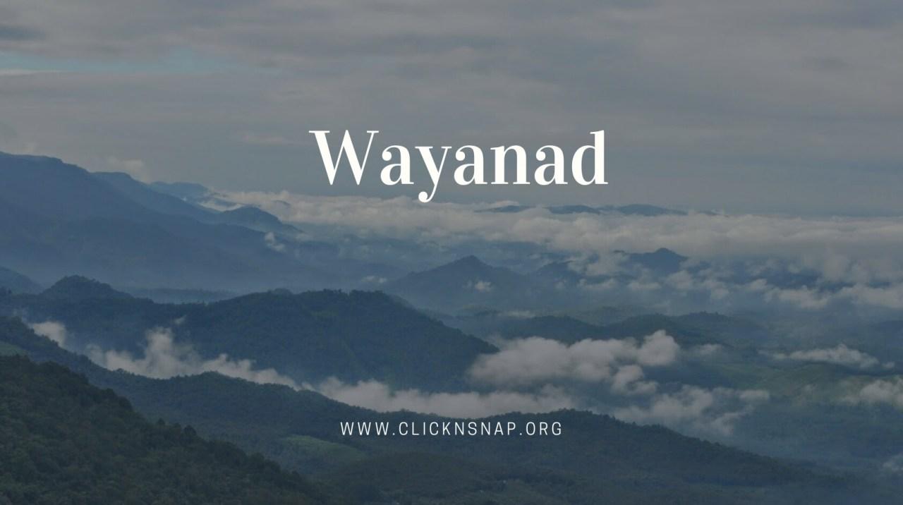 Wayanad, Summer Holiday, India