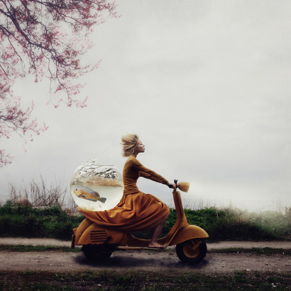©Kylli Sparre, Estonia, Winner Open Enhanced, 2014 Sony World Photography Awards