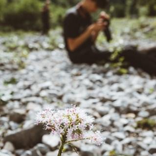 _Fotoworkshop_Silberregion_Karwendel