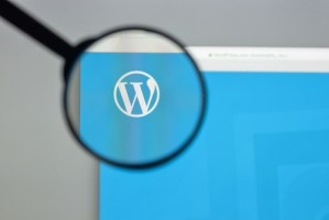 Wordpress powers 1/3 of the World Wide Web