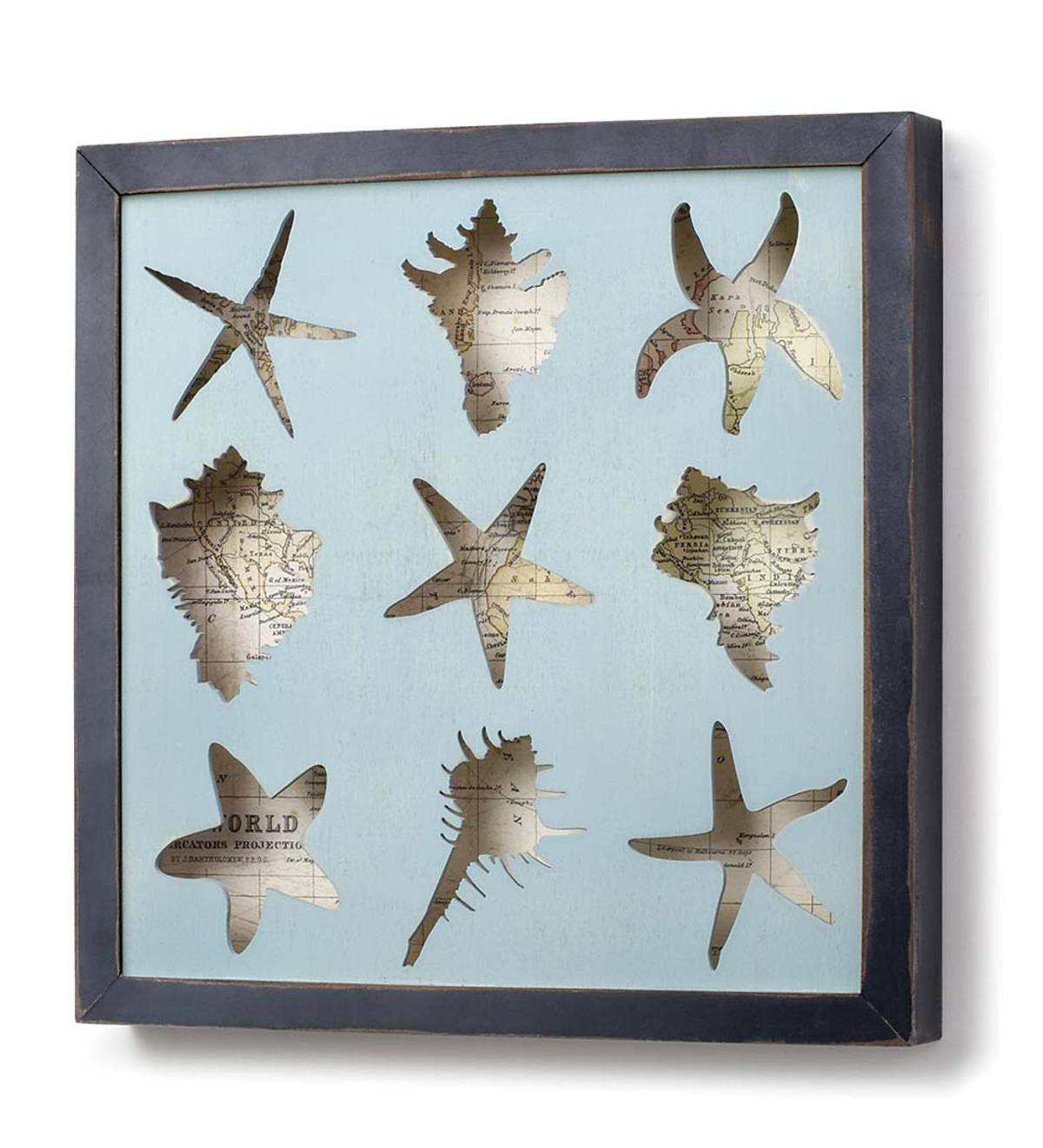 framed seashell shadow box wall art wind and weather