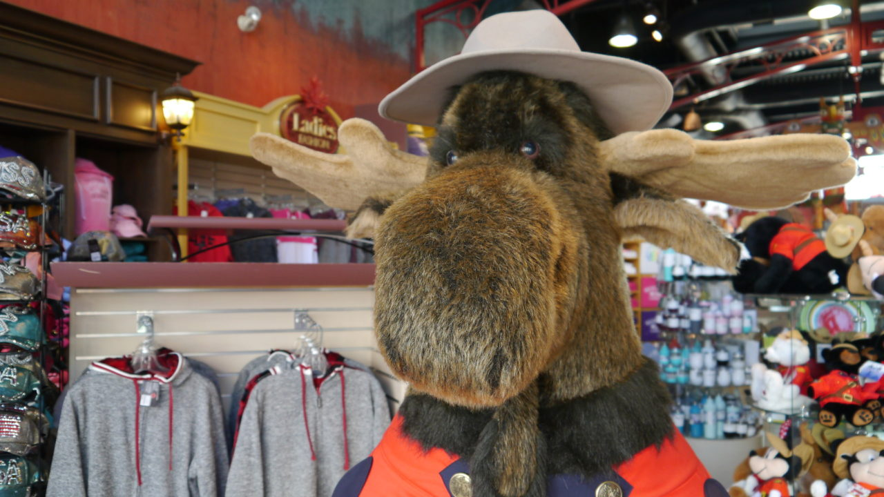 10 Of The Most Popular Souvenirs At The Canada Trading Company Clifton Hill Blog