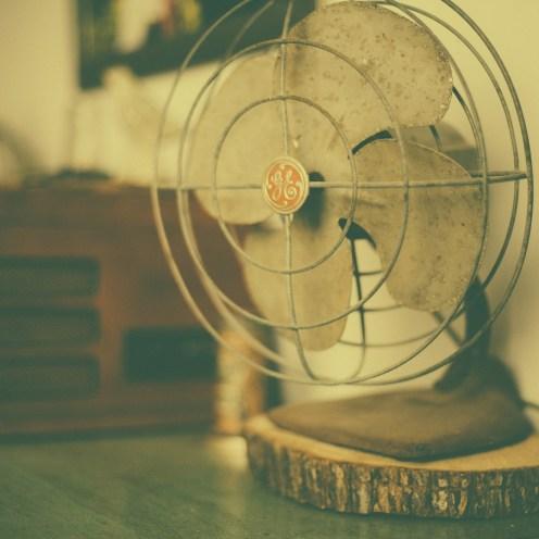 fan-349932_1920