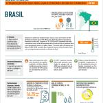 Brasil_Portuguese_Picture
