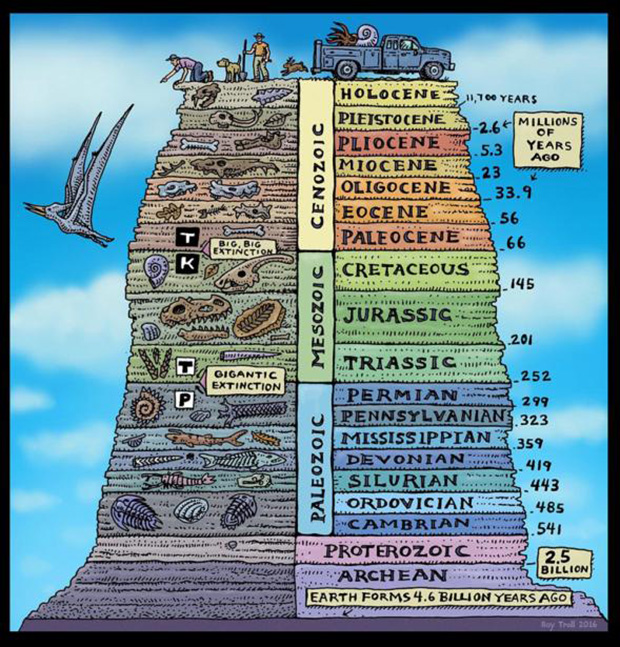 A cartoon drawing of geologic time as a butte, with the right hand side divided up by eons and periods, and the left-hand side showing fossils from those periods.