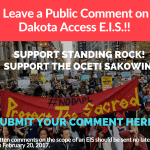 Stand In Solidarity! Submit a Public Comment