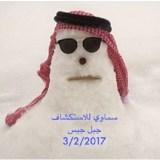 Le Previsioni di CM – 6 / 12 Febbraio 2017