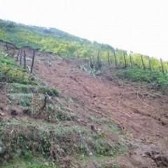 """Il Dissesto Idrogeologico in Italia: Ci Vuole il """"Geologo Condotto"""""""
