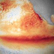 E' nato prima El Niño o l'AGW?