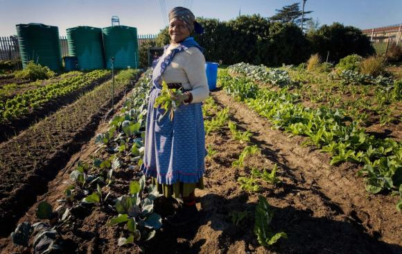 South Africa Should Take a Sustainable Development Approach to Economic Recovery from COVID-19