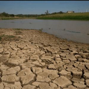 Government Attitude Towards Environmental Regulation in Brazil