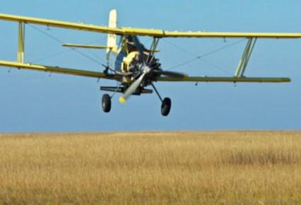 Tierra Aerial Planting