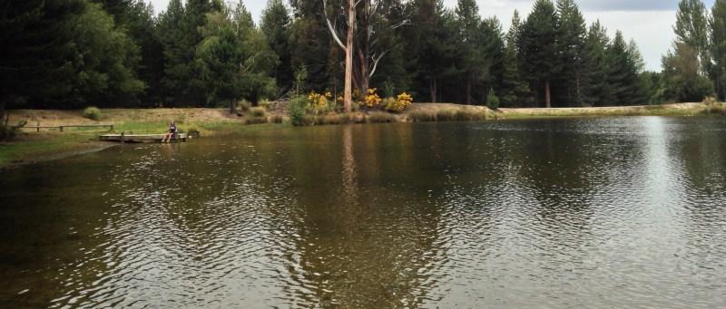 Coal Pit Lake