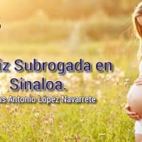 El útero o matriz subrogada en Sinaloa, México