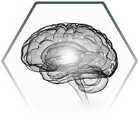 clínica llorente neurofisiología