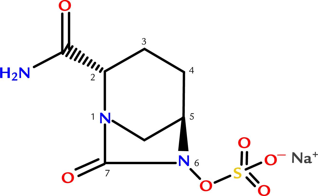 Ceftazidime Avibactam A Novel Cephalosporin Lactamase Inhibitor Combination For The Treatment