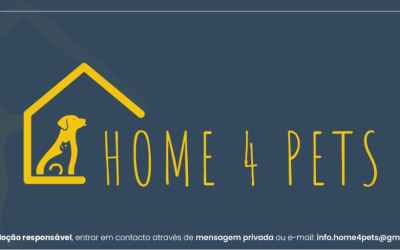 HOME 4 PETS