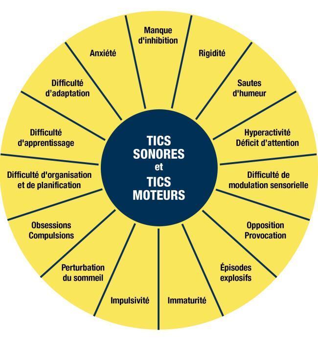 Syndrome Gilles de la Tourette de l'AQST