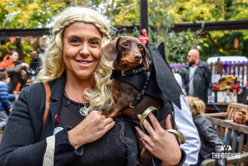 Halloween Dog Show | Halloween in London | Clink Hostels