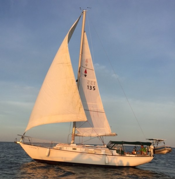 gulf_sail_3
