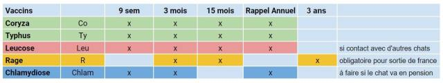 calendrier vaccinal du chat