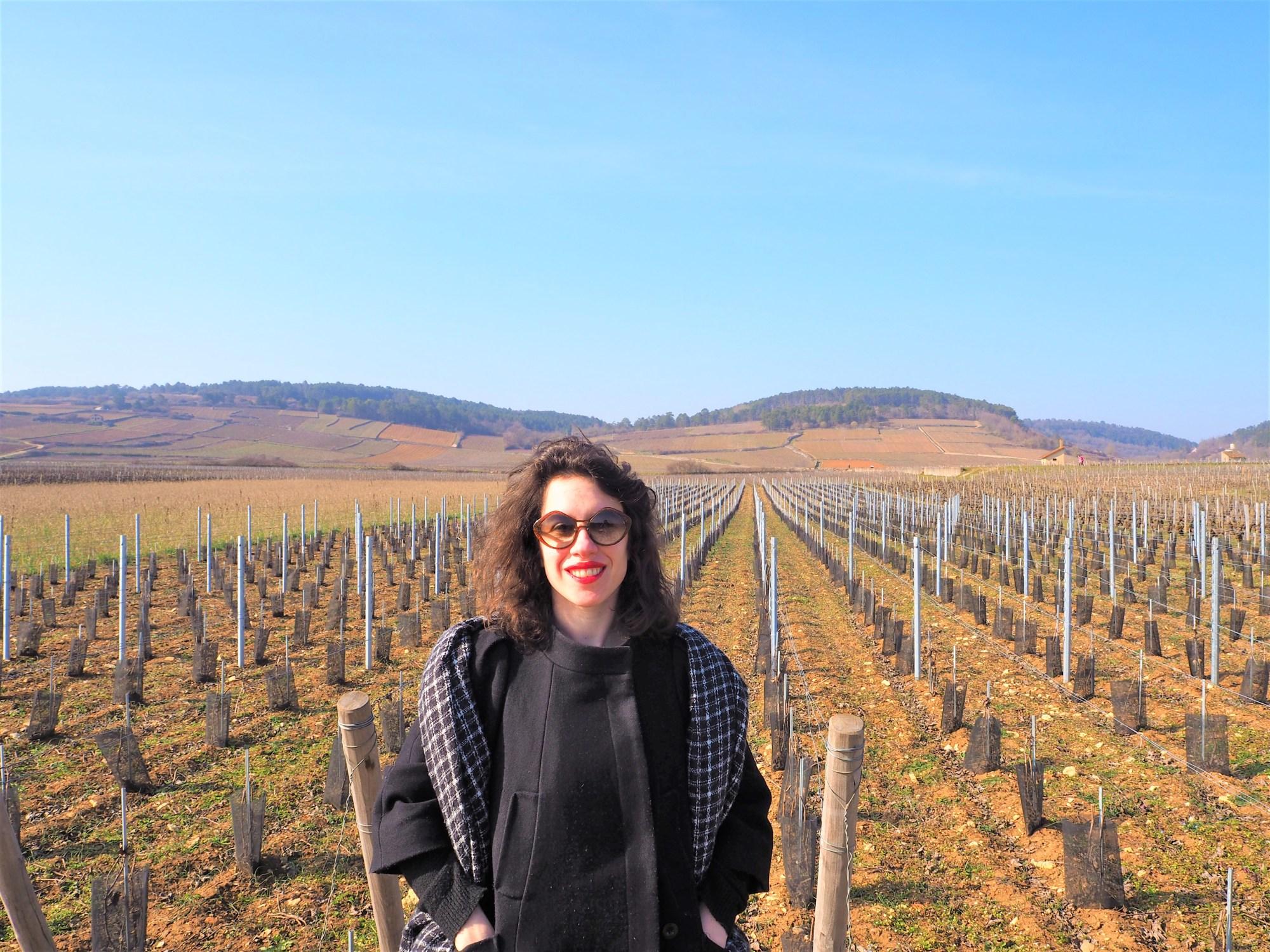 La véloroute la voie des vignes beaune meursault puligny pommard dijon clioandco voyager